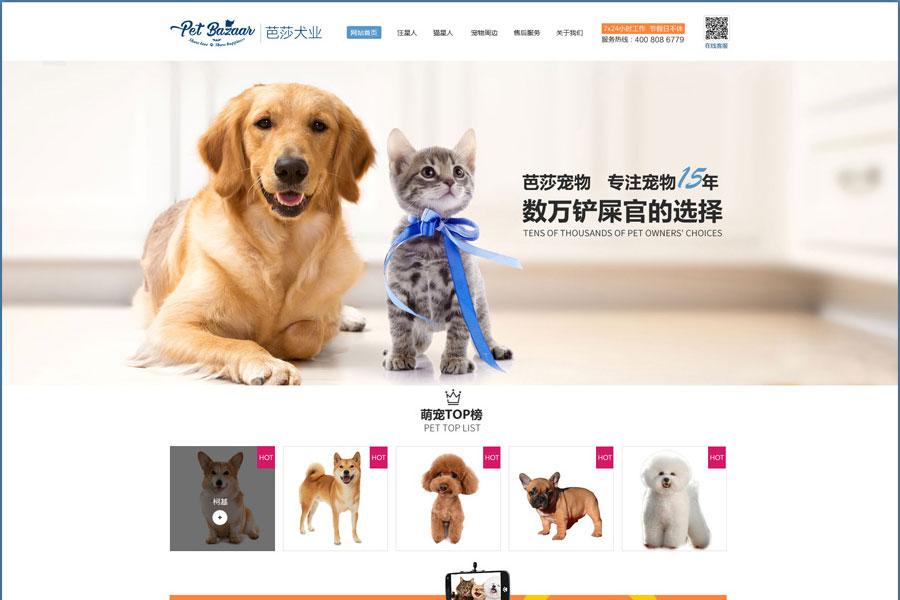 上海金山区企业做网站建设时该如何选择网络公司